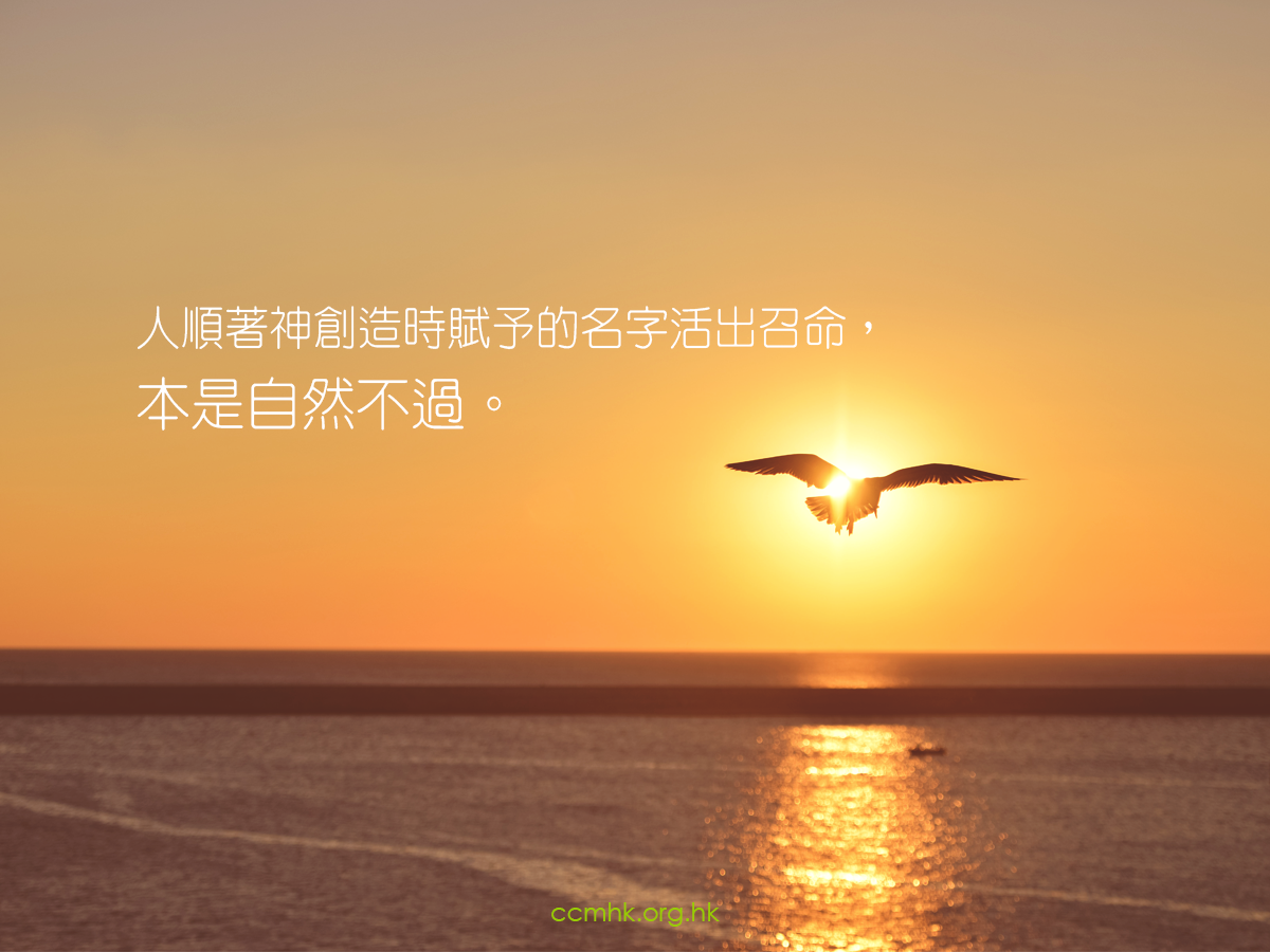 ccmFB_CP152_20180424